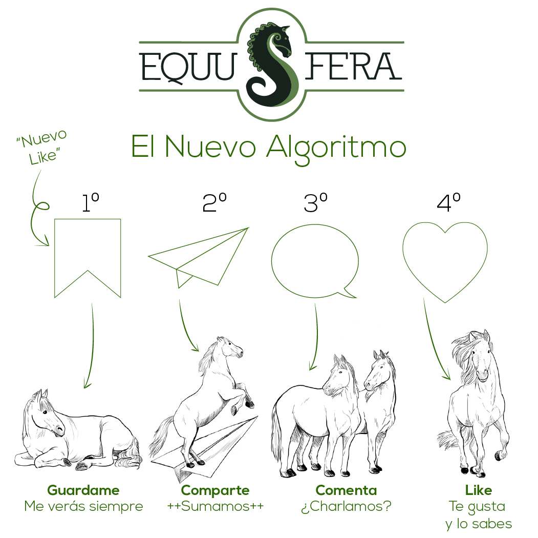 Diseño  redes equusfera